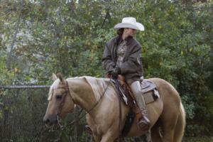 Palomino Reining Horse